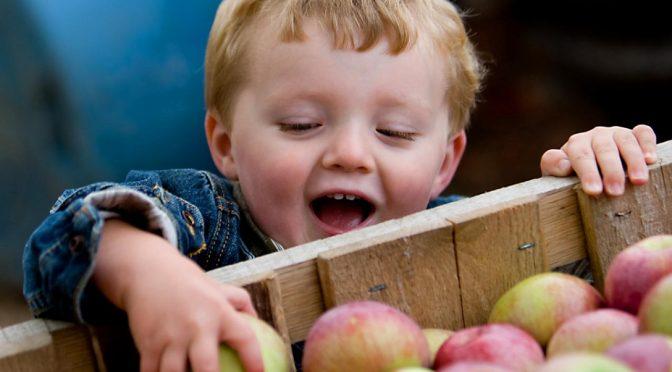 Купувайте сезонни продукти, белете плодовете