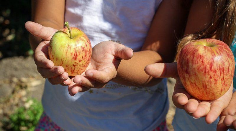 Защо е добре децата да ядат сезонни продукти